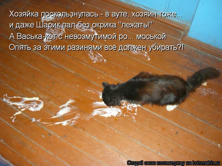 """Котоматрица: Хозяйка поскользнулась - в ауте, хозяин тоже...  и даже Шарик пал без окрика """"лежать!"""" А Васька-кот с невозмутимой ро... моськой Опять за этими р"""