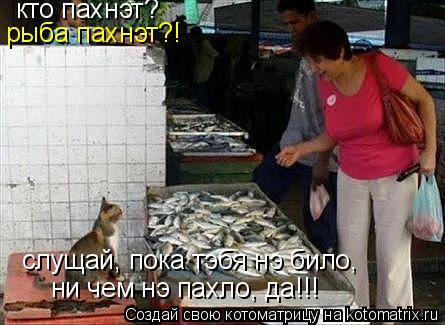 Котоматрица: кто пахнэт? рыба пахнэт?! слущай, пока тэбя нэ било, ни чем нэ пахло, да!!!