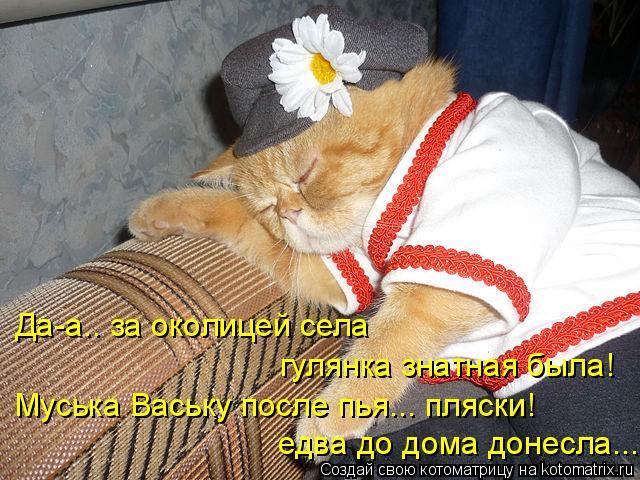 Котоматрица: Да-а.. за околицей села  гулянка знатная была! Муська Ваську после пья... пляски! едва до дома донесла...