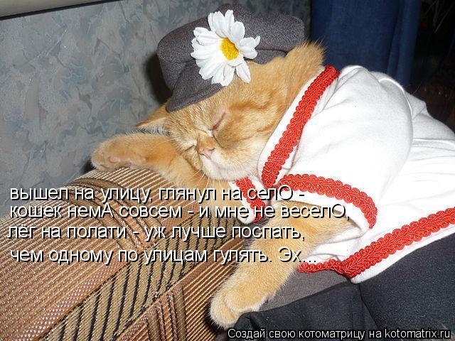 Котоматрица: вышел на улицу, глянул на селО - кошек немА совсем - и мне не веселО, лёг на полати - уж лучше поспать, чем одному по улицам гулять. Эх...