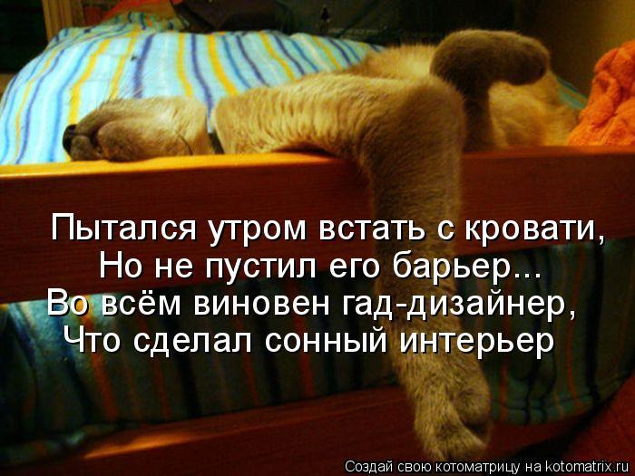 Котоматрица - Пытался утром встать с кровати, Но не пустил его барьер... Во всём вин