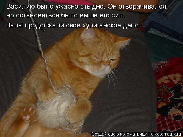 Котоматрица - Василию было ужасно стыдно. Он отворачивался, но остановиться было выш