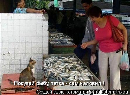 Котоматрица: Покупай рыбу, тетка - сам наловил !
