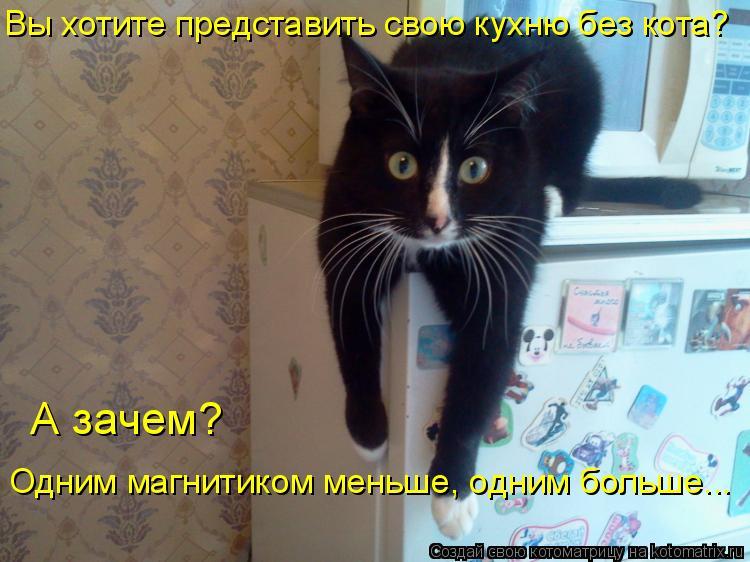 Котоматрица - Вы хотите представить свою кухню без кота?  А зачем?  Одним магнитиком