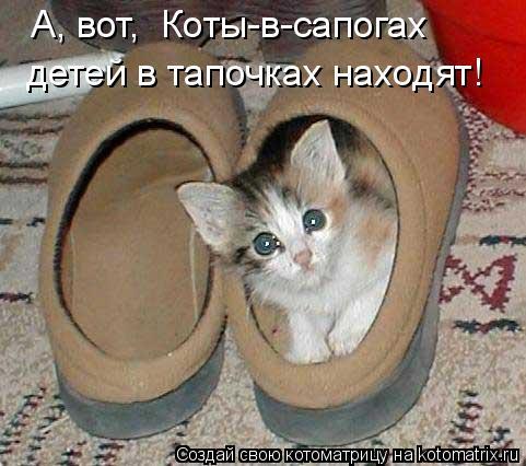 Котоматрица - А, вот,  Коты-в-сапогах  детей в тапочках находят!