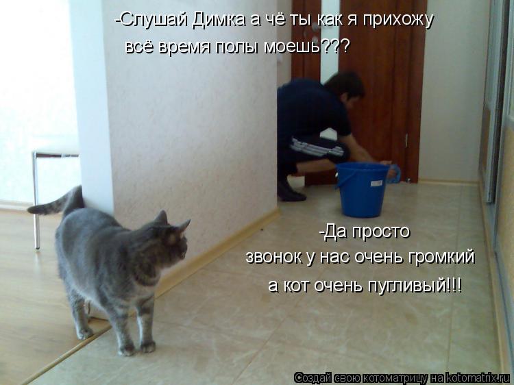 чем мыть дверь чтобы кот не метил для