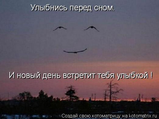 Котоматрица - Улыбнись перед сном. И новый день встретит тебя улыбкой !