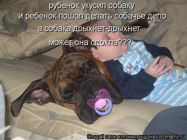 Котоматрица: рубенок укусил собаку и ребенок пошол делать собачье дело а собака дрыхнет-дрыхнет может она сдохла???