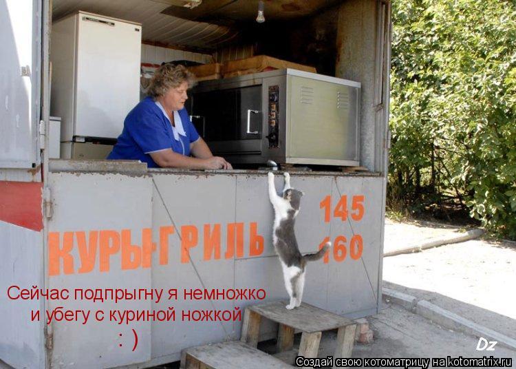 Котоматрица: Сейчас подпрыгну я немножко и убегу с куриной ножкой : )
