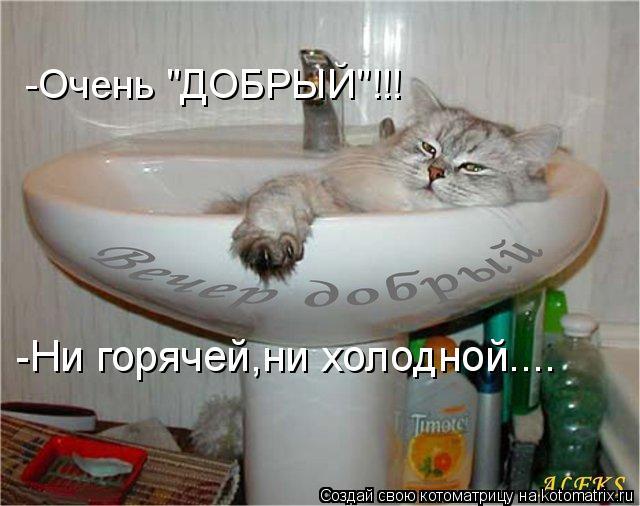 """Котоматрица - -Очень """"ДОБРЫЙ""""!!! -Ни горячей,ни холодной...."""