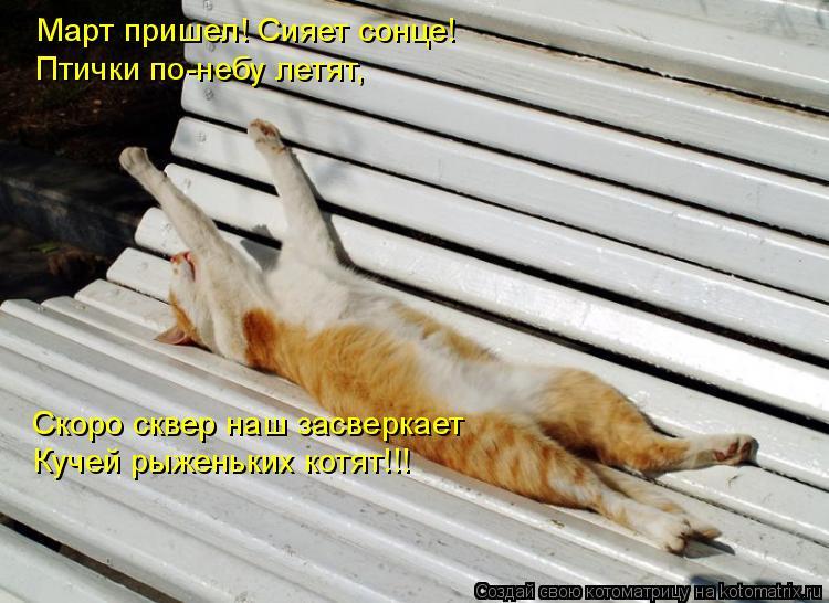 Котоматрица: Март пришел! Сияет сонце! Птички по-небу летят, Кучей рыженьких котят!!! Скоро сквер наш засверкает