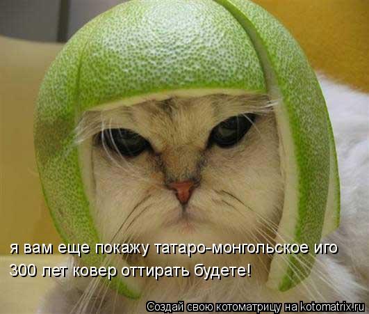 Котоматрица: я вам еще покажу татаро-монгольское иго 300 лет ковер оттирать будете!