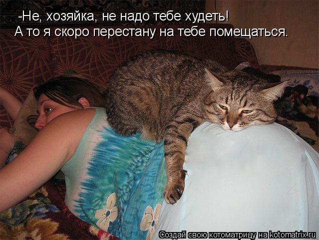 Котоматрица: -Не, хозяйка, не надо тебе худеть! А то я скоро перестану на тебе помещаться.