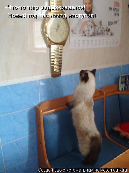 Котоматрица: -Что-то тигр задерживается!  Новый год час назад наступил!