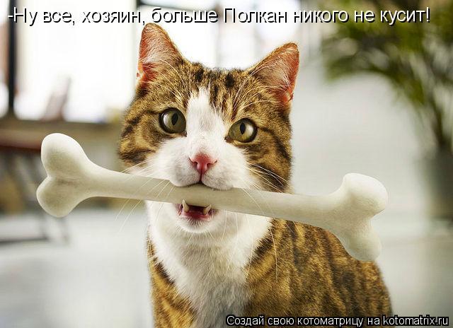 Котоматрица: -Ну все, хозяин, больше Полкан никого не кусит!