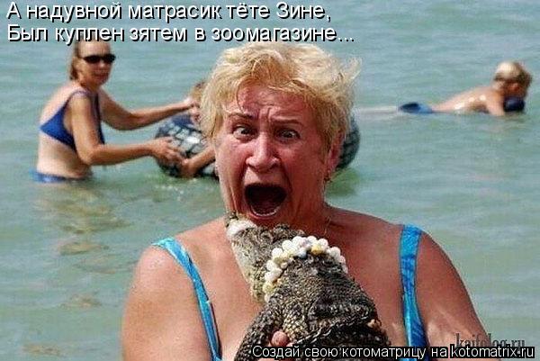 Котоматрица - А надувной матрасик тёте Зине, Был куплен зятем в зоомагазине...