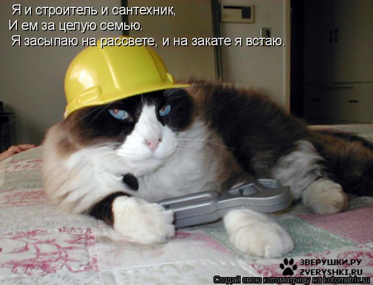 Котоматрица: Я и строитель и сантехник, И ем за целую семью. Я засыпаю на рассвете, и на закате я встаю.