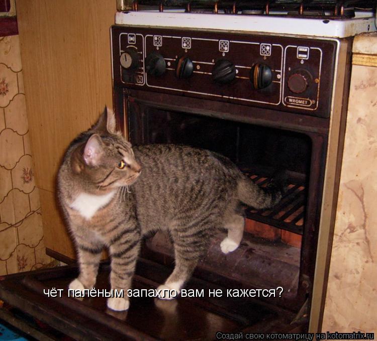 Котоматрица: чёт палёным запахло вам не кажется?
