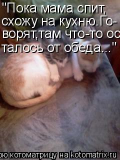 poka-tsandra-spit