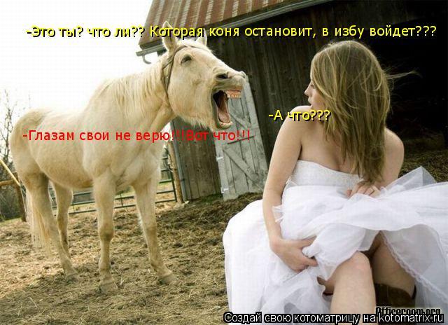 Котоматрица: -Это ты? что ли?? Которая коня остановит, в избу войдет??? -А что??? -Глазам свои не верю!!!Вот что!!!
