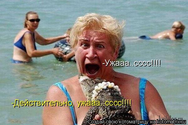 Котоматрица: -Ужааа..сссс!!!! -Действительно, ужааа..сссс!!!!