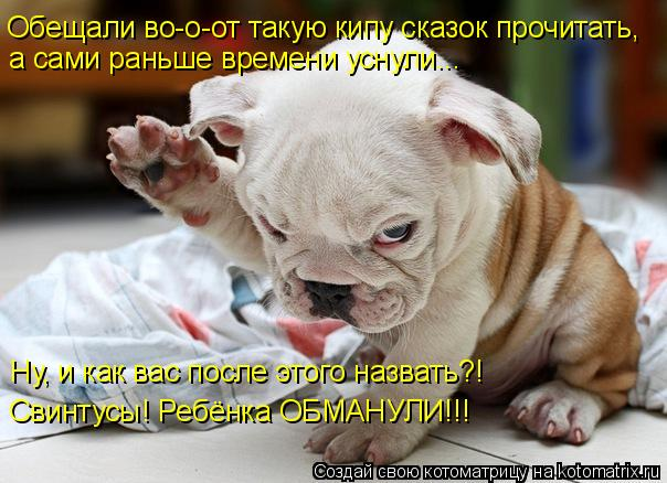 Котоматрица: Обещали во-о-от такую кипу сказок прочитать, а сами раньше времени уснули... Ну, и как вас после этого назвать?! Свинтусы! Ребёнка ОБМАНУЛИ!!!