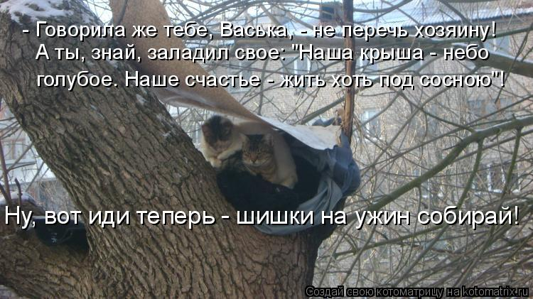 Котоматрица - - Говорила же тебе, Васька, - не перечь хозяину! А ты, знай, заладил с