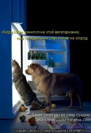 Котоматрица: -Когда Иван женился на этой вегетарианке, наш холодильник стал похож на огород -Давай тогда мы ее саму съедим: баба с возу - нам полегче, Гггг