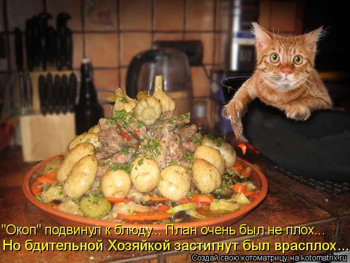 """Котоматрица: """"Окоп"""" подвинул к блюду... План очень был не плох... Но бдительной Хозяйкой застигнут был врасплох..."""