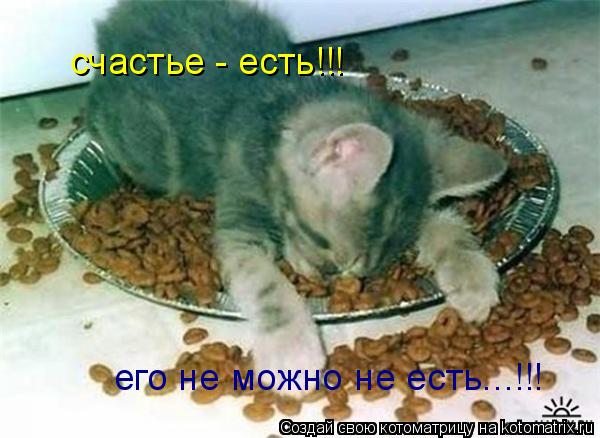 Котоматрица: счастье - есть!!! его не можно не есть...!!!
