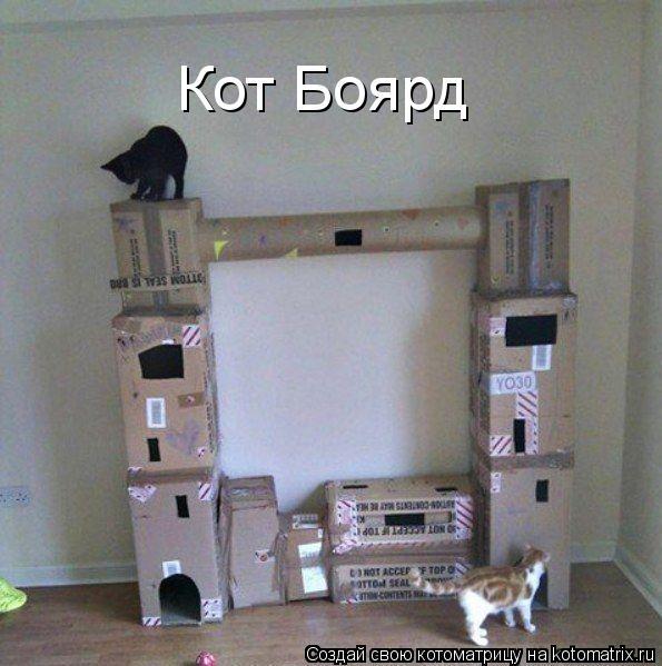 Котоматрица - Кот Боярд