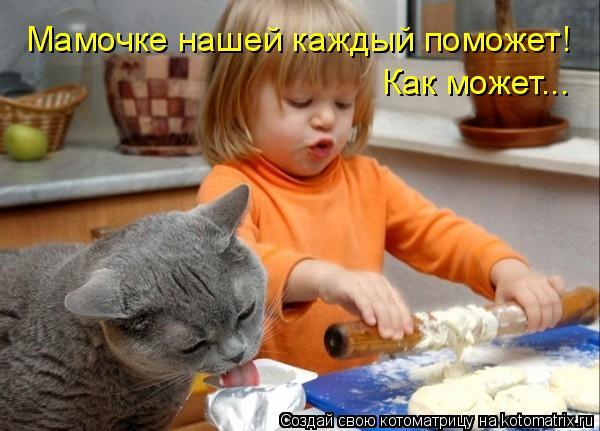 Котоматрица: Мамочке нашей каждый поможет! Как может...
