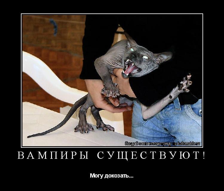 Котоматрица: Вампиры существуют! Могу докозать...