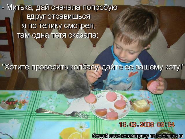 """Котоматрица: - Митька, дай сначала попробую вдруг отравишься я по телику смотрел,  там одна тетя сказала: """"Хотите проверить колбасу, дайте ее вашему коту!"""""""