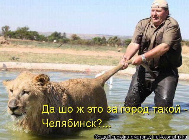 Котоматрица - Да шо ж это за город такой - Челябинск?...