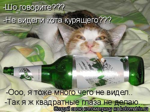 Котоматрица: -Не видели кота курящего??? -Шо говорите??? -Ооо, я тоже много чего не видел.. -Так я ж квадратные глаза не делаю..