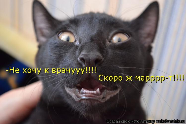 Котоматрица: -Не хочу к врачууу!!!! Скоро ж марррр-т!!!!