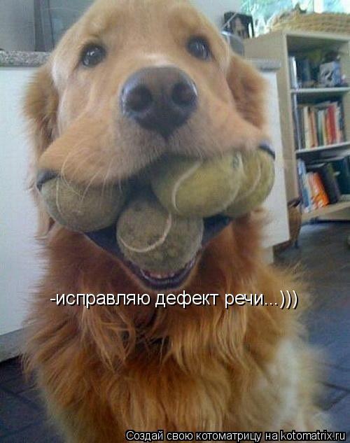 Котоматрица: -исправляю дефект речи...)))