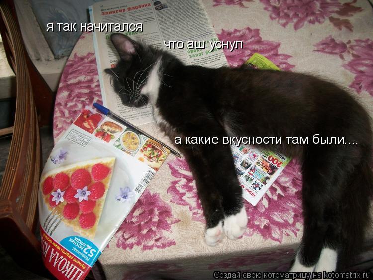 Котоматрица: я так начитался  что аш уснул а какие вкусности там были....