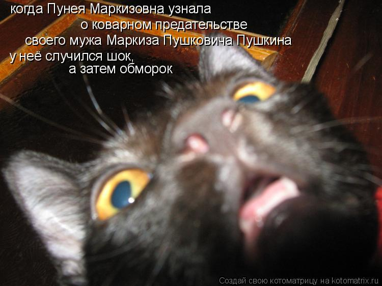 Котоматрица: когда Пунея Маркизовна узнала о коварном предательстве своего мужа Маркиза Пушковича Пушкина у неё случился шок, а затем обморок