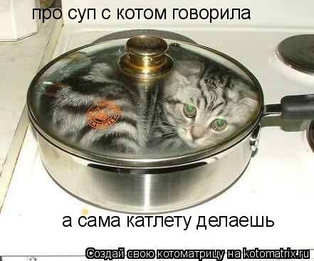 Котоматрица: про суп с котом говорила а сама катлету делаешь