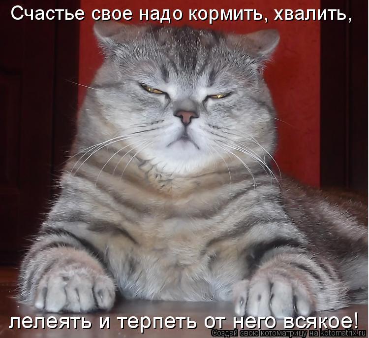 Котоматрица - Счастье свое надо кормить, хвалить, лелеять и терпеть от него всякое!