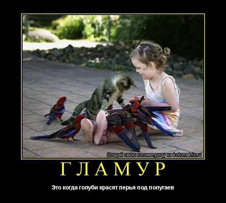 Котоматрица: ГЛАМУР Это когда голуби красят перья под попугаев