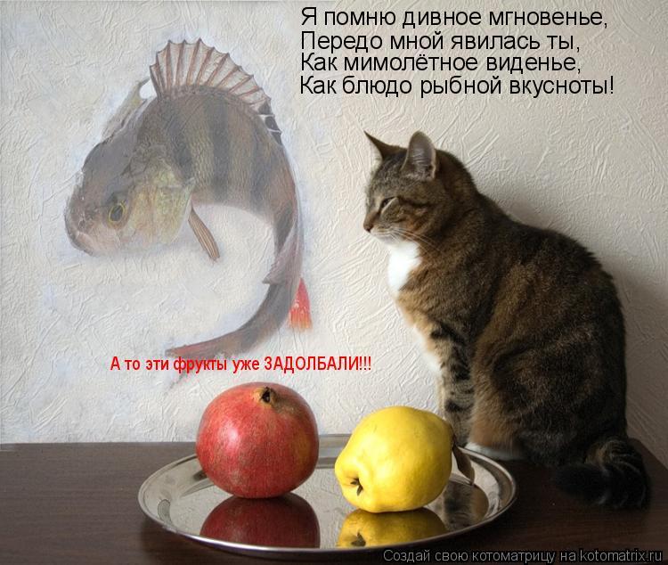 Котоматрица: Я помню дивное мгновенье, Передо мной явилась ты, Как мимолётное виденье, Как блюдо рыбной вкусноты! А то эти фрукты уже ЗАДОЛБАЛИ!!!