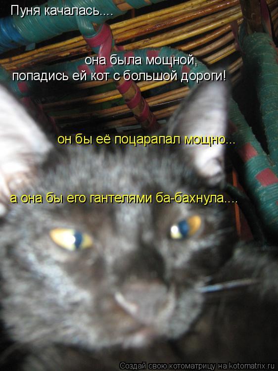 Котоматрица: Пуня качалась.... она была мощной, попадись ей кот с большой дороги! он бы её поцарапал мощно...  а она бы его гантелями ба-бахнула....