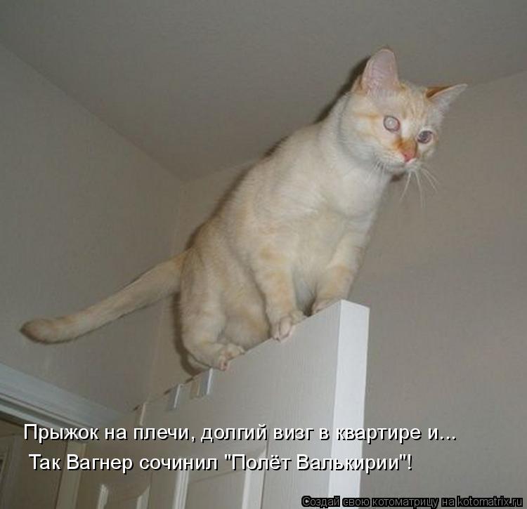 """Котоматрица: Прыжок на плечи, долгий визг в квартире и... Так Вагнер сочинил """"Полёт Валькирии""""!"""