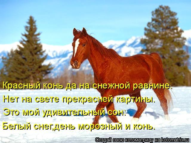 Стих к подарку лошадка 80