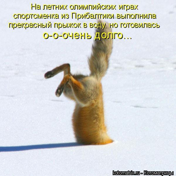 Котоматрица: На летних олимпийских играх спортсменка из Прибалтики выполнила прекрасный прыжок в воду, но готовилась о-о-очень долго...