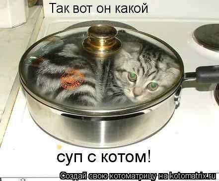 Котоматрица: Так вот он какой суп с котом!