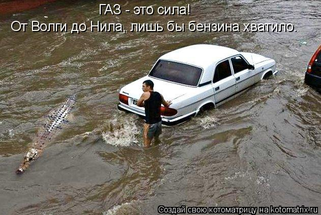 Котоматрица: ГАЗ - это сила! От Волги до Нила, лишь бы бензина хватило.